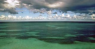 Greenocean-large